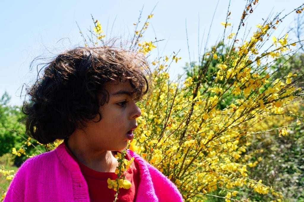 Boy standing in front of yellow flowers