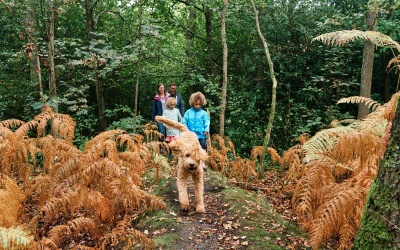 Family photography at Hayes Common, Bromley