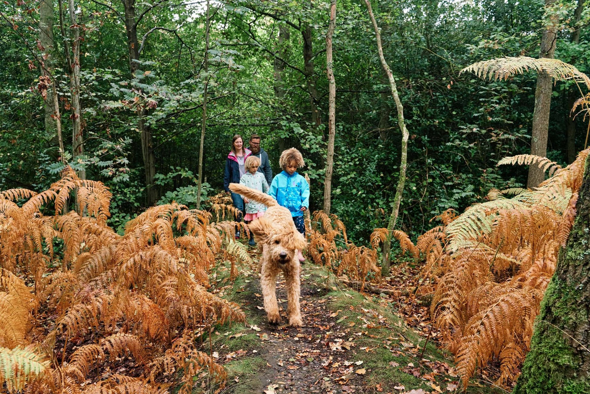 Family photograph with the dog running ahead on the path in Hayes Common