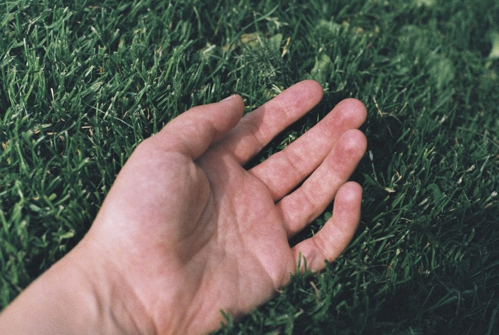 A photo of a hand lying on grass to support the text about my photography and film business having a greener footprint.