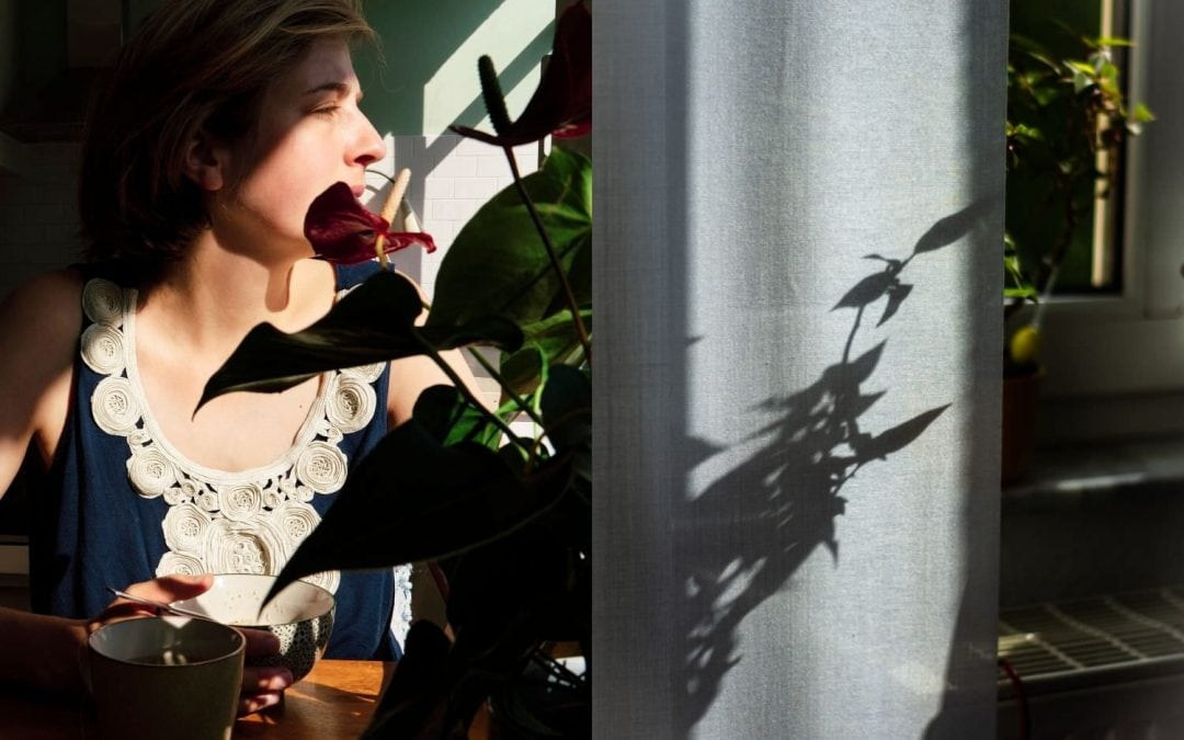 Collaborative Art: a photographic diptych